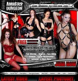 Read Ambers Dungeon review