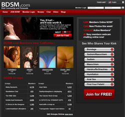 BDSM review