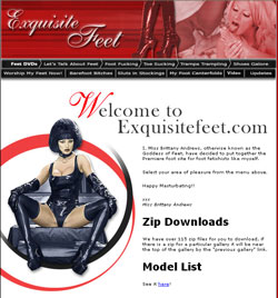 Exquisite Feet members area previews