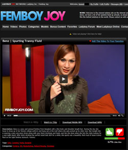 Read Femboy Joy review