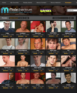 His First Gay Sex members area previews