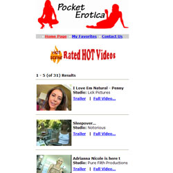 Read Pocket Erotica review
