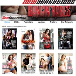 Read Shane Diesels Bangin Babes review