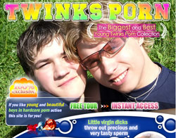 Read Twinks Porn review