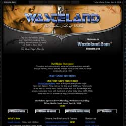 Read Wasteland review